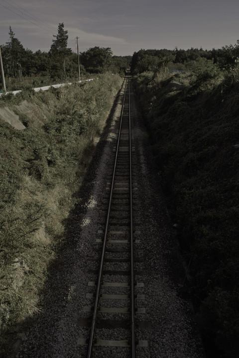 Sdim0206